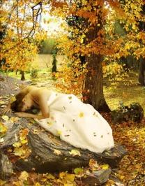 missu_autumn
