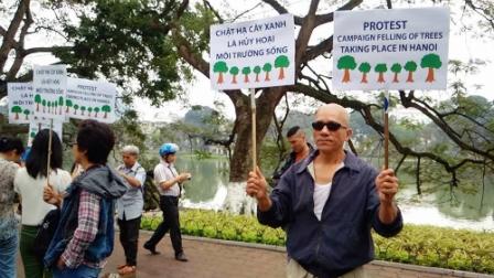 Người dân ở Hà Nội biểu thị sự không đồng tình chặt hạ hàng loạt cây xanh.